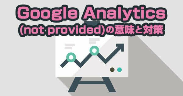 Google Analytics (not provided)の意味と対策